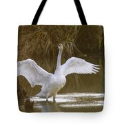 The Swan Spreads Its Wimgs Tote Bag
