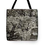 The Swinging Tree Sepia Tote Bag