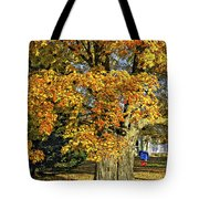 The Swinging Tree Tote Bag