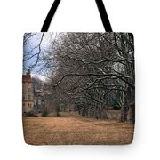 The Sycamores Tote Bag