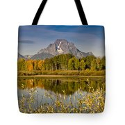 The Tetons And Fall Colors Tote Bag