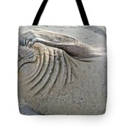 The Thinker - Elephant Seal On The Beach Tote Bag