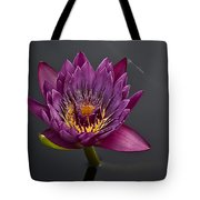 The Tiny Dragonfly On A Water Lily Tote Bag