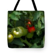 The Tomato Plant Tote Bag
