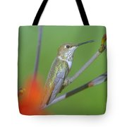 The Tongue Of A Humming Bird  Tote Bag