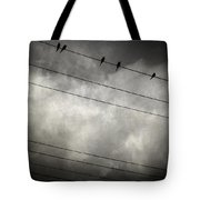 The Trace 11.24 Tote Bag by Taylan Apukovska