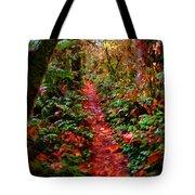 The Trail At Rainbow Falls Washington Tote Bag