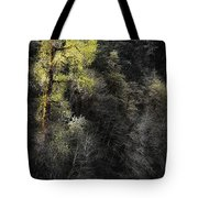 The Tree Across The River Tote Bag
