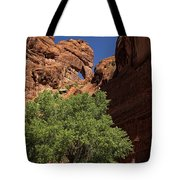 The Tree And The Window Tote Bag