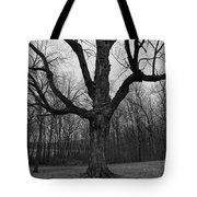 The Tree In The Park Tote Bag
