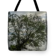 The Tree With His Feet In Water Tote Bag
