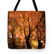 The Trees Dance As The Sun Smiles Tote Bag