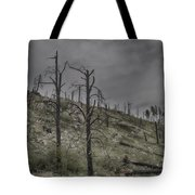 The Trees That Were Tote Bag