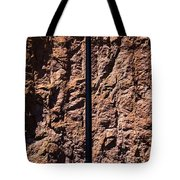 The Triumph Of Man Tote Bag