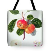 The Trumpington Apple Tote Bag by William Hooker