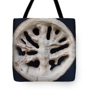 The Trunk Of Time Tote Bag