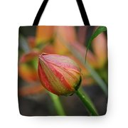 The Tulip Bud Tote Bag