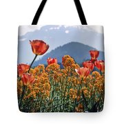 The Tulips In Bloom Tote Bag