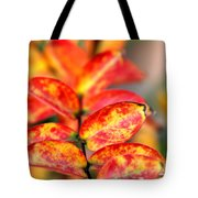 The Turning Season Tote Bag