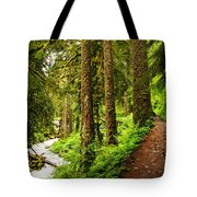 The Twisting Path Winding Through Paradise  Tote Bag