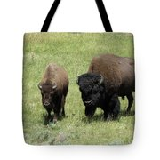 The Two Of Us Tote Bag