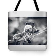 The Unbelievable Truth Tote Bag