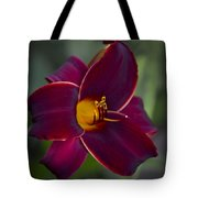 The Unsurpassable Daylily Tote Bag