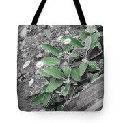 The Untouchable Plant Tote Bag