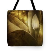 The Unveiling 2 Tote Bag