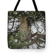 The Vantage Point Tote Bag