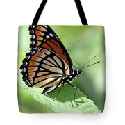 The Viceroy Tote Bag