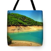 The View At Shasta Lake Tote Bag