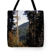 The View From Cispus Tote Bag