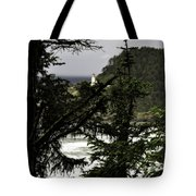 The View Of The Heceta Lighthouse Tote Bag