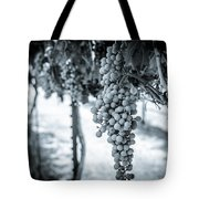 The Vineyard   Bw Tote Bag