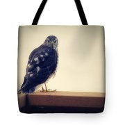 The Visitor Lake Huron Michigan Tote Bag