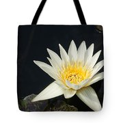 The Waking Up... Tote Bag