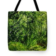 The Walls Are Alive - Seaside Abstract Tote Bag
