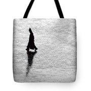 The Wanderer.. Tote Bag