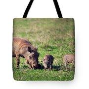The Warthog Family On Savannah In The Ngorongoro Crater. Tanzania Tote Bag