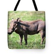 The Warthog On Savannah In The Ngorongoro Crater. Tanzania Tote Bag