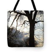 The Washington Monument Lost In The Trees Tote Bag