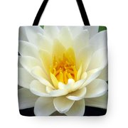 The Water Lilies Collection - 03 Tote Bag