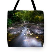 The Waters Of The Eureka Waterfalls. Mauritius Tote Bag