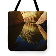 The Wave Reflected Beauty 3 Tote Bag