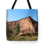 The Wedge Canyon Dechelly Tote Bag