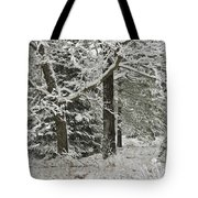The Weight Of Winter Tote Bag