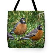 The Welcoming Committee E186 Tote Bag