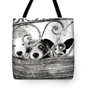 The Welcoming  Tote Bag
