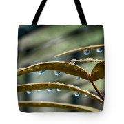 The Wet Of The Rain V2 Tote Bag